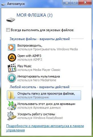 MoyaFleshka