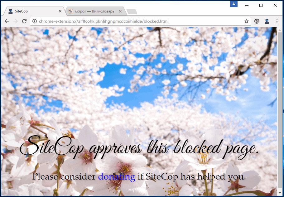 Расширение - блокировщик SiteCop, или как составить черный список сайтов в Chrome